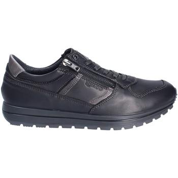 Skor Herr Sneakers IgI&CO 2136400 Svart