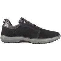 Skor Herr Sneakers Lumberjack SM51805 002 V17 Brun