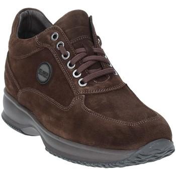 Skor Herr Boots Exton 2029 Brun