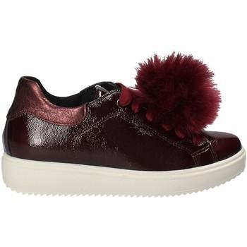 Skor Dam Sneakers IgI&CO 2154844 Röd