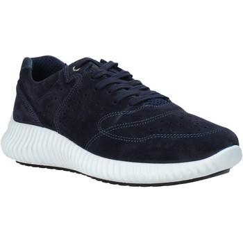 Skor Herr Sneakers IgI&CO 5123733 Blå