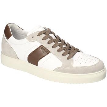 Skor Herr Sneakers IgI&CO 3132922 Vit