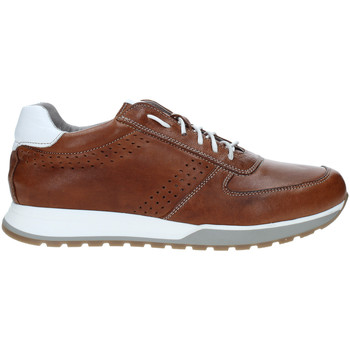Skor Herr Sneakers Rogers 5065 Brun