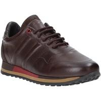 Skor Herr Sneakers Exton 246 Brun