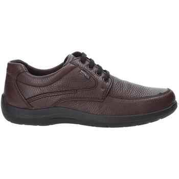 Skor Herr Sneakers Enval 4233511 Brun
