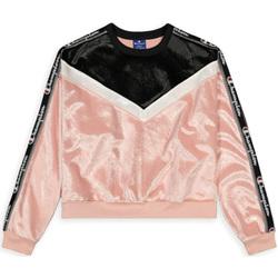 textil Dam Sweatshirts Champion 112276 Rosa