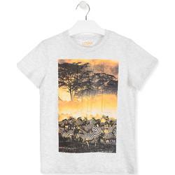 textil Barn T-shirts Losan 013-1017AL Vit