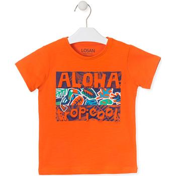textil Barn T-shirts Losan 015-1025AL Orange