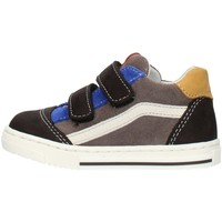 Skor Pojkar Sneakers Balocchi 602211 Multicolored
