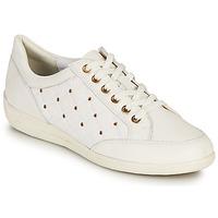 Skor Dam Sneakers Geox D MYRIA H Vit / Guldfärgad