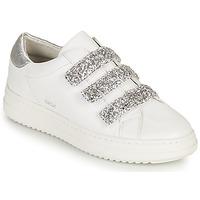 Skor Dam Sneakers Geox D PONTOISE C Vit / Silver