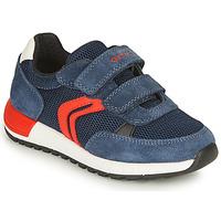 Skor Pojkar Sneakers Geox ALBEN BOY Marin / Röd