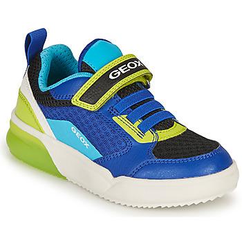 Skor Pojkar Sneakers Geox GRAYJAY BOY Blå / Lime