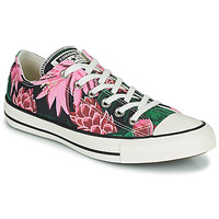Skor Dam Sneakers Converse CHUCK TAYLOR ALL STAR JUNGLE SCENE OX Rosa / Grön
