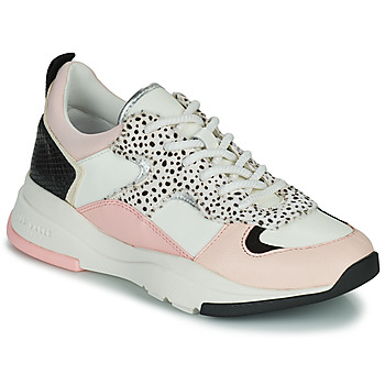Skor Dam Sneakers Ted Baker IZSLA Vit / Rosa