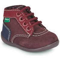 Skor Flickor Boots Kickers BONBON-2 Violett / Röd / Marin