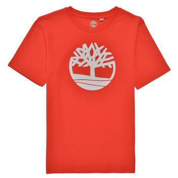 textil Pojkar T-shirts Timberland LOLLA Röd