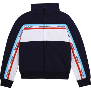 textil Pojkar Sweatshirts Timberland SWATT Flerfärgad