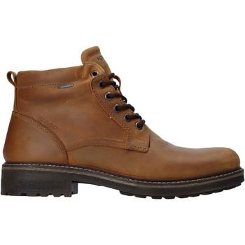 Skor Herr Boots IgI&CO 4122422 Brun