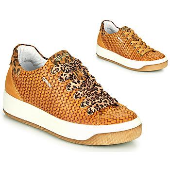 Skor Dam Sneakers IgI&CO SHOUHAI Okrafärgad