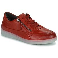 Skor Dam Sneakers Jana PHOEBIA Röd