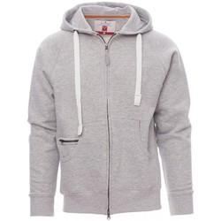 textil Herr Sweatshirts Payper Wear Sweatshirt Payper Dallas+ gris