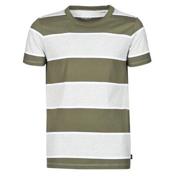 textil Herr T-shirts Esprit T-SHIRTS Kaki
