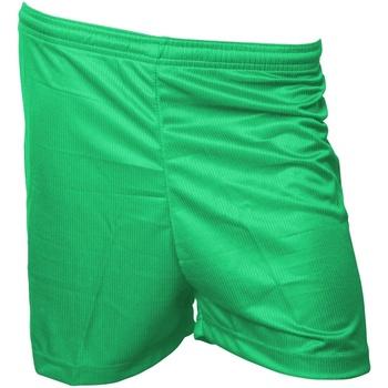 textil Herr Shorts / Bermudas Precision  Grön