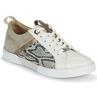 Skor Dam Sneakers JB Martin GELATO Grå / Vit