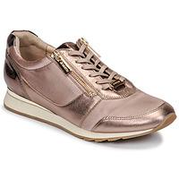Skor Dam Sneakers JB Martin VERI Blush