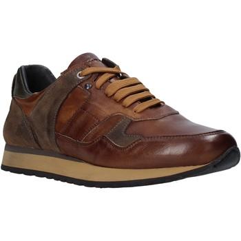 Skor Herr Sneakers Exton 591 Brun