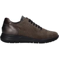 Skor Dam Sneakers Grunland SC5083 Brun