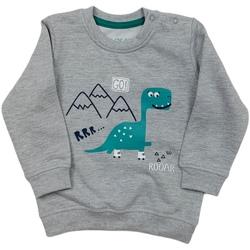 textil Barn Sweatshirts Losan 027-6652AL Grå