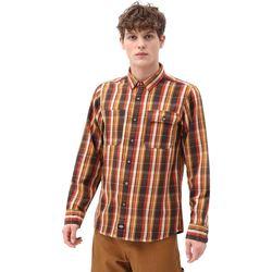 textil Herr Långärmade skjortor Dickies DK0A4X5LBD01 Brun