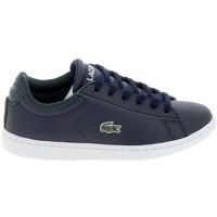 Skor Herr Sneakers Lacoste Carnaby C Marine Blanc Blå