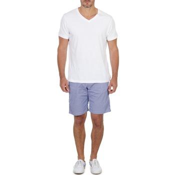 textil Herr Shorts / Bermudas Franklin & Marshall GAWLER Blå / Beige