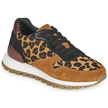 Skor Dam Sneakers JB Martin HABILLE Brun