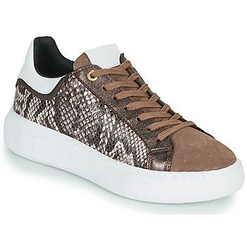 Skor Dam Sneakers JB Martin HIBISCUS Brun