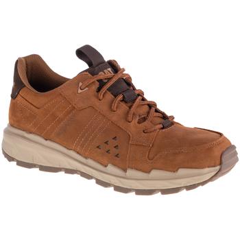 Skor Herr Sneakers Caterpillar Startify LO WP Marron