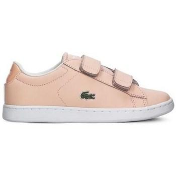 Skor Flickor Sneakers Lacoste Carnaby Evo Strap Rosa