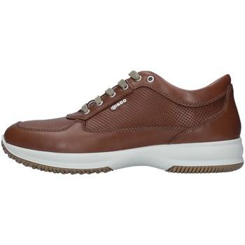 Skor Herr Sneakers IgI&CO 7119022 BROWN