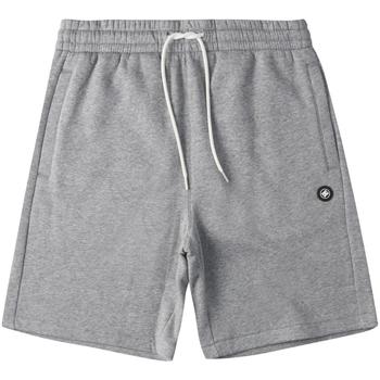textil Herr Shorts / Bermudas DC Shoes Riot Sweat Grå