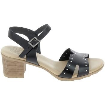 Skor Dam Sandaler Porronet Sandale F12626 Noir Svart
