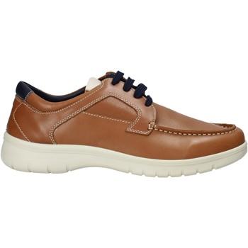 Skor Herr Sneakers Melluso XU17128 Brun