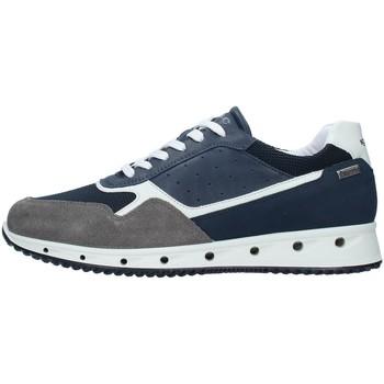 Skor Herr Sneakers IgI&CO 7121100 NAVY BLUE