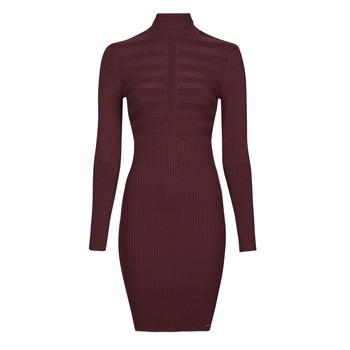textil Dam Korta klänningar Morgan RMENTO Bordeaux