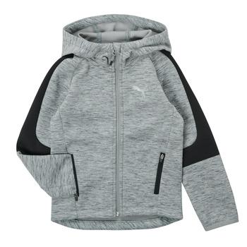 textil Pojkar Sweatshirts Puma EVOSTRIPE FZ HOODED JACKET Grå