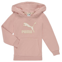 textil Flickor Sweatshirts Puma T4C HOODIE Rosa