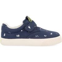 Skor Barn Sneakers Gioseppo ZAPATILLAS CON VELCRO NIÑOS  MYERS 59606 Blå