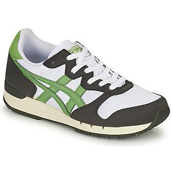 Skor Sneakers Onitsuka Tiger ALVARADO Grön / Svart / Vit